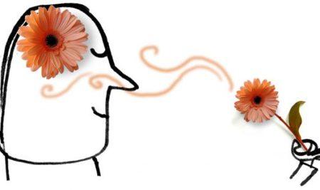Aromaterapia în slujba frumuseții; aromele și creierul